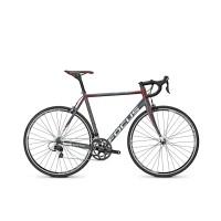 Bicicleta Focus Cayo Al 105 22G 2016 - 570mm (L)