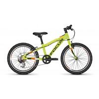 Bicicleta Focus Raven Rookie 7G 20 green