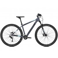 Bicicleta Focus Whistler 3.8 20G 29 grey 2019 - 480mm (L)