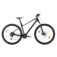Bicicleta Sprint Apolon Pro 29 Negru/GriMatt 2020 - 440 mm