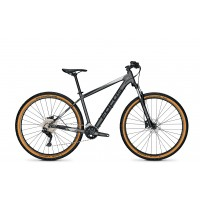 Bicicleta Focus Whistler 3.7 29 Toronto Grey 2021 - 40(S)