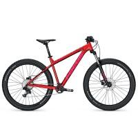 Bicicleta Focus Bold Pro Donna 11G 27.5 barolored 2017